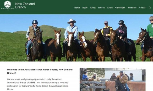 Australian Stock Horse Society New Zealand Branch""