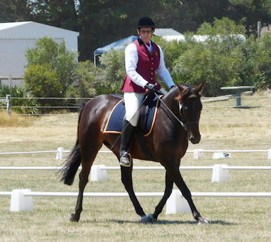 Karen-riding in dressage competition